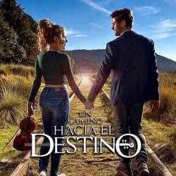Compra la Telenovela: Un camino hacia el destino completo en DVD.