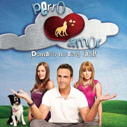 Comprar la Telenovela: Perro amor completo en DVD.