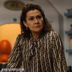 Gonca Cilasun es Halise Efeoğlu en La Hija del Embajador aqui completo en USB y DVD.