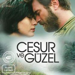 Comprar la Serie Valiente y hermosa(Cesur ve Güzel)-(Audio Latino) completo en USB y DVD.