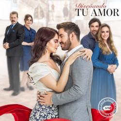 Comprar la Telenovela Disenando tu Amor completo en USB Y DVD.
