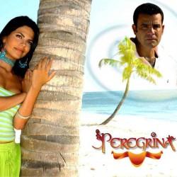 Comprar la Telenovela: Peregrina completo en DVD.