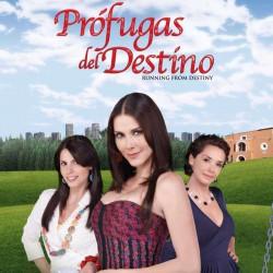 Comprar la Telenovela: Prófugas del destino completo en DVD.