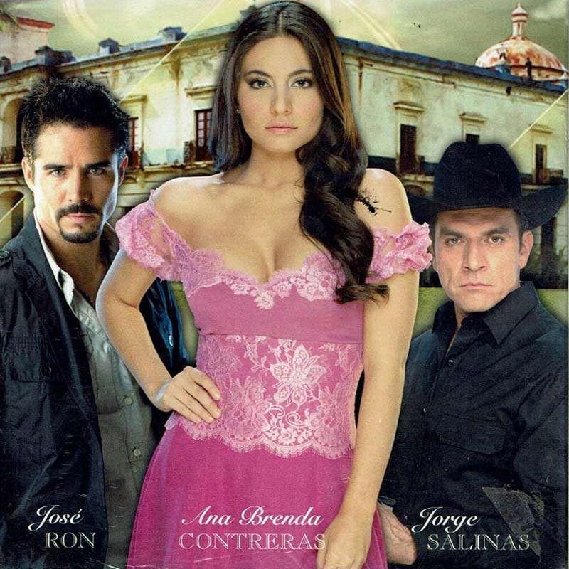 Comprar la Telenovela: La que no podia amar completo en DVD.