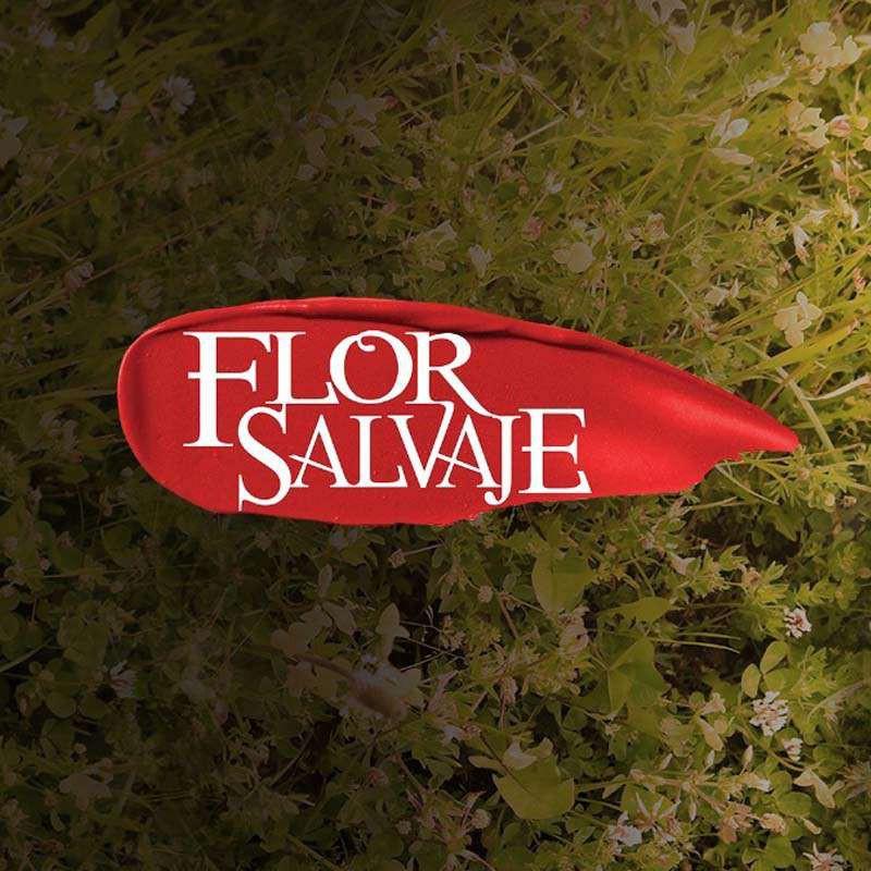 Comprar la Telenovela: Flor Salvaje completo en DVD.