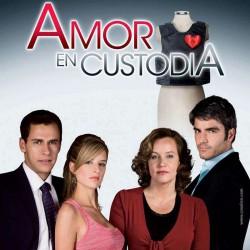 Comprar la Telenovela: Amor en custodia completo en DVD.