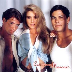 Comprar la Telenovela: Cañaveral de pasiones completo en DVD.