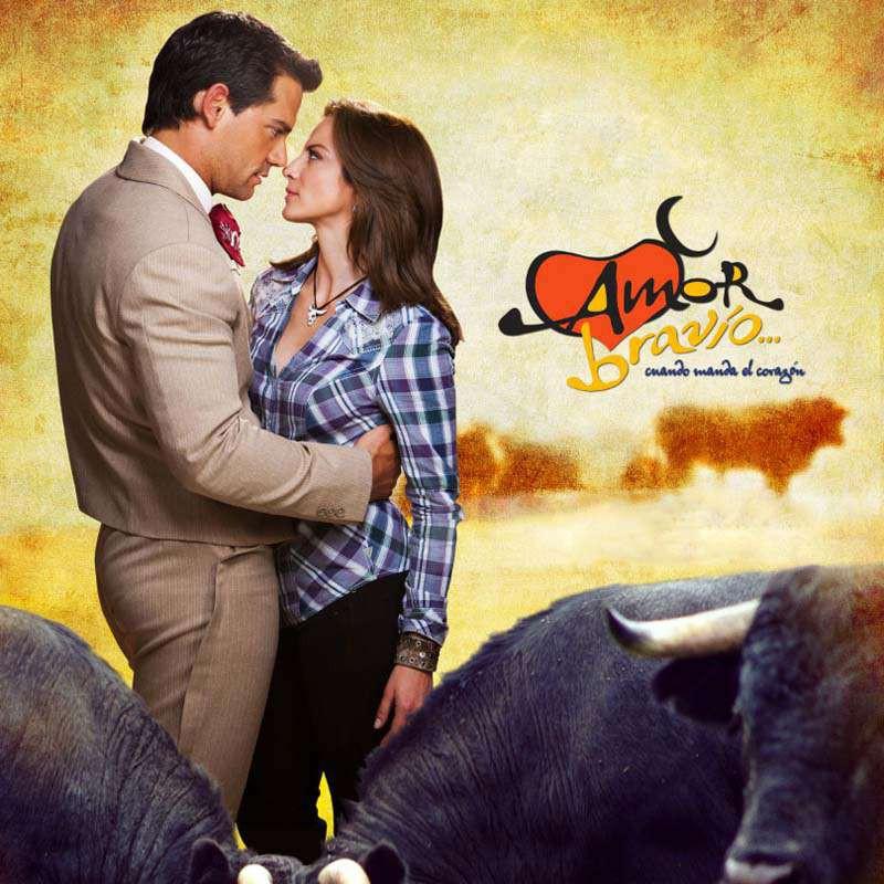 Compra la Telenovela: Amor bravio completo en DVD.