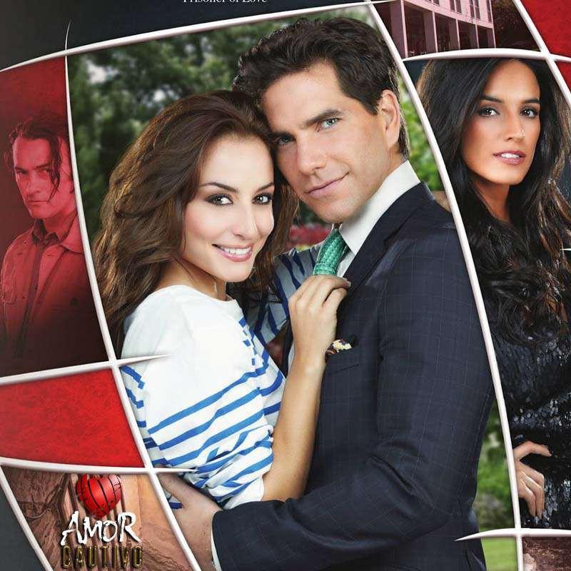 Compra la Telenovela: Amor cautivo completo en DVD.