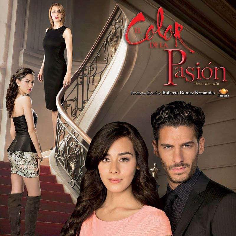 Compra la Telenovela: El color de la pasión completo en DVD.